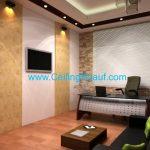 ceiling-3D 2